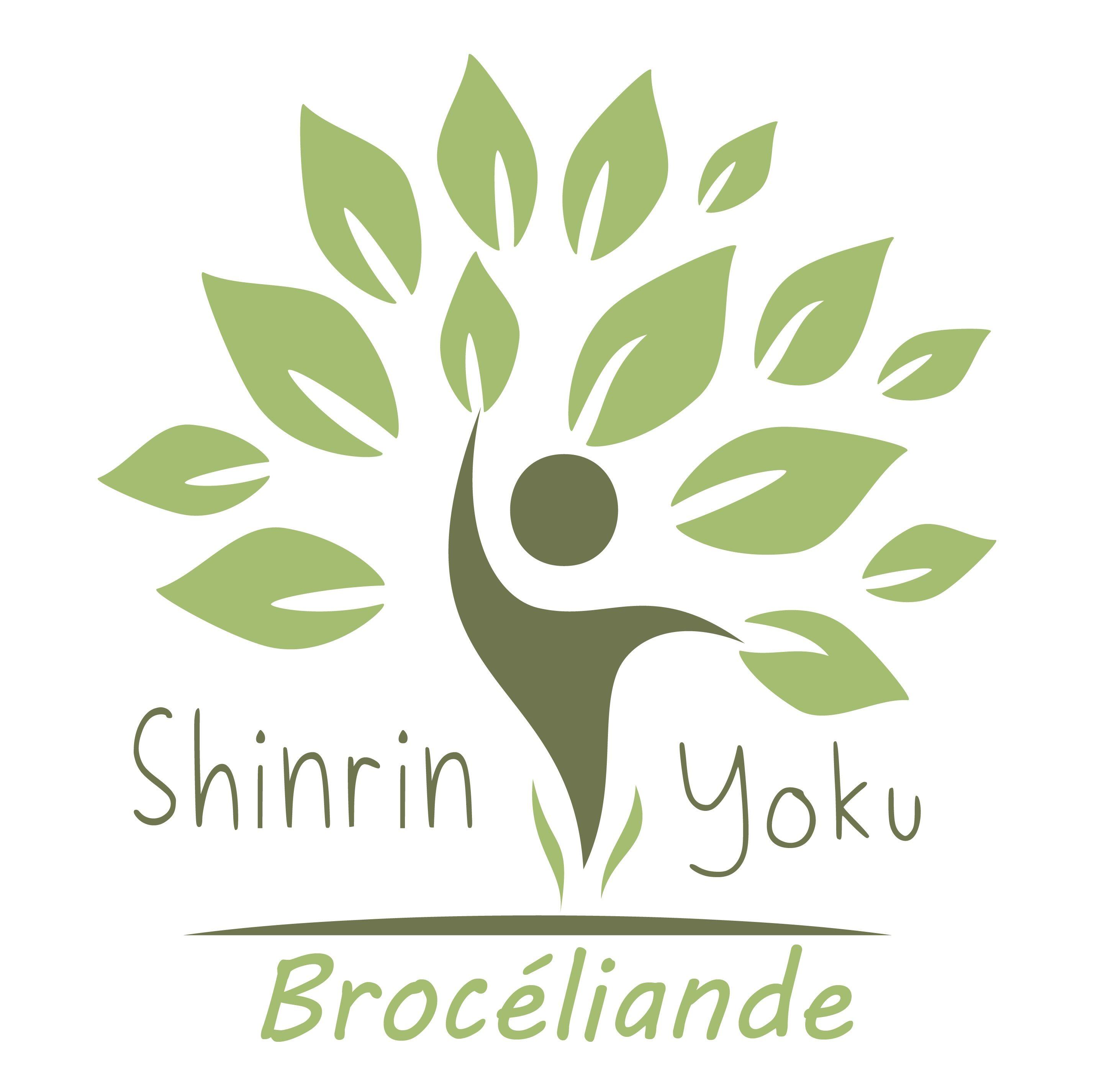 Sylvothérapie et Bain de forêt en Brocéliande